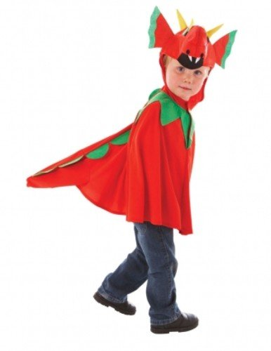 Friendly Dragon Boys Halloween Book Week Boys Girls Fancy Dress Costume Ages 3 -5 Years