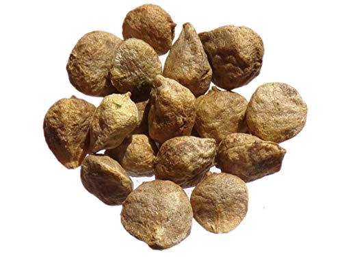 Epinard Matador - 15 grammes - Spinacia Olerecea L.- Spinach - SEM02