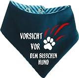 KLEINER FRATZ Gestreiftes Hunde Wende- Halstuch (Fb: Petrol-türkis) (Gr.1 - HU 27-30 cm) Vorsicht vor Dem Bisschen Hund
