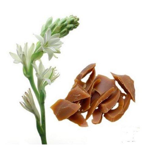 Tuberose Floral Wax Organic 1 Oz