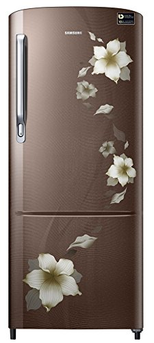 Samsung 230 L 4 Star Direct-cool Single Door Refrigerator (rr24m274yd2/nl, Star Flower Brown)