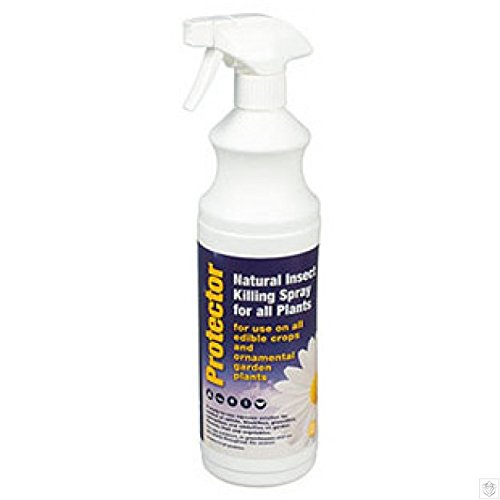 protector-natural-insect-killing-spray-for-all-plants-350ml-contains-natural-pyrethrins-kills-aphids