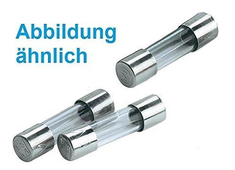 ESKA G-Sicherungseinsatz Feinsicherung T 6,3A 5x20mm 522.025 Träge (20 Stück