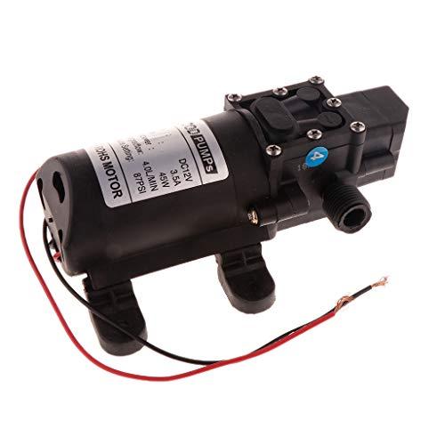 HomeDecTime Hochdruck Wasserpumpe Membranpumpe 12V 4l/min High Pressure Water Pump - B