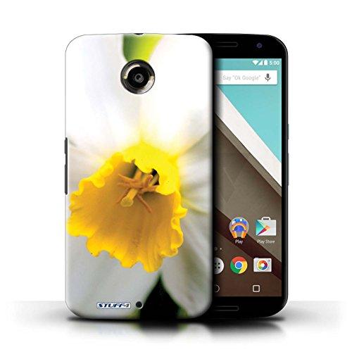 iCHOOSE Hülle / Hülle für iPhone 6+/Plus 5.5 / harter Plastikfall für Telefon / Collection Blumengarten Blumen / Sonnenblumen Weiße Blume