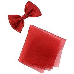 Boutique-Magique Noeud papillon élastique bébé ou petit garçon + pochette tissu, Bordeaux, Taille unique