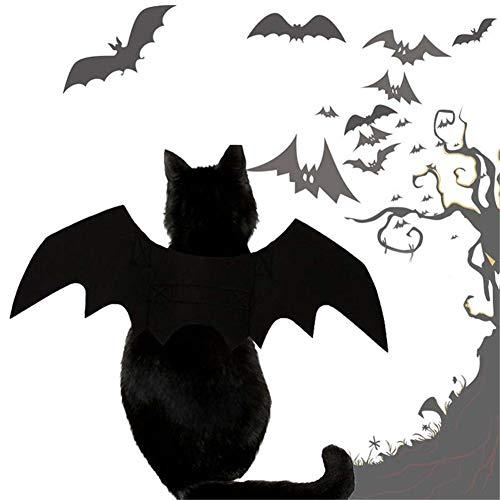 Lanbowo Halloween-Katzen-Kostüm, Kürbis-Halsband, Glocke, Flügel, für Welpen, Hunde, Katzen, Schwarz