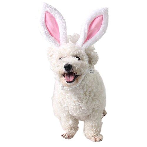 FLAdorepet Kaninchen-Ohren für Katzen und kleine Hunde, als Kostüm Zubehör Kopfbedeckung (Häschen Kaninchen Kostüm Für Hunde)