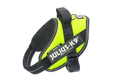 Julius-K9, 16IDC-NE-M, IDC-Powergeschirr, Hundegeschirr, Größe: Mini, neon grün (Dark 0 Perfect)