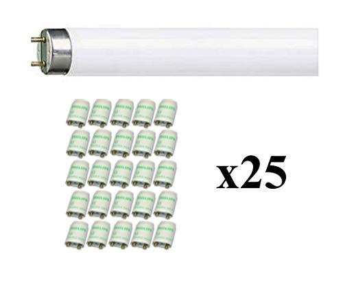 DX43225 - Diametro 25 mm Lotto Confezione 25 Pezzi Gewiss Raccordo per Tubo Scatola MS IP67 Grigio Ral7035