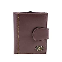 Swiss Military Brown Mens Wallet (PW6)