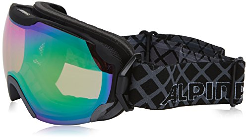 ALPINA Pheos QMM Skibrille, Black Matt, One Size