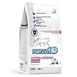 Forza10 Hypoallergenic Active, Cibo Secco per Gatti con patologie della Pelle, Confezione da 1 (1 x 454 g)