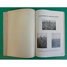 venezia QUADERNO MENSILE 1926 n. 7 Razza grigia - Stazioni di confine - Battaglia grano Polesine