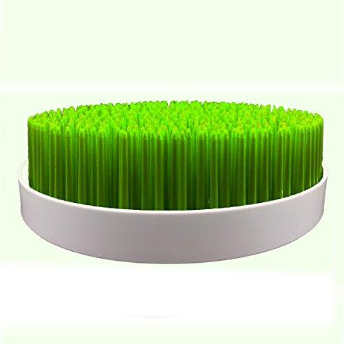 egouttoir-design-pelouse