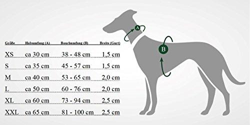 Hunter Hunde-Geschirr Neopren