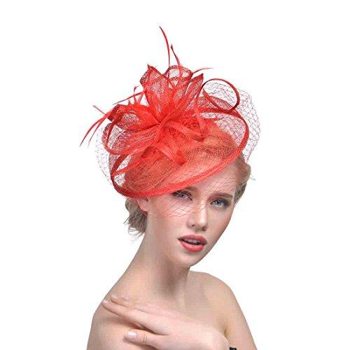 dressfan Stirnband Fascinator Charming Dot Mesh Blumen Feder Kopfschmuck Abdeckung Netz Mesh-Kappe Party Bankett Braut Haarschmuck