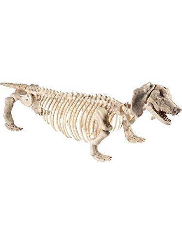 Smiffys Dackel Skelett, 55x13c30cm, Natur, -