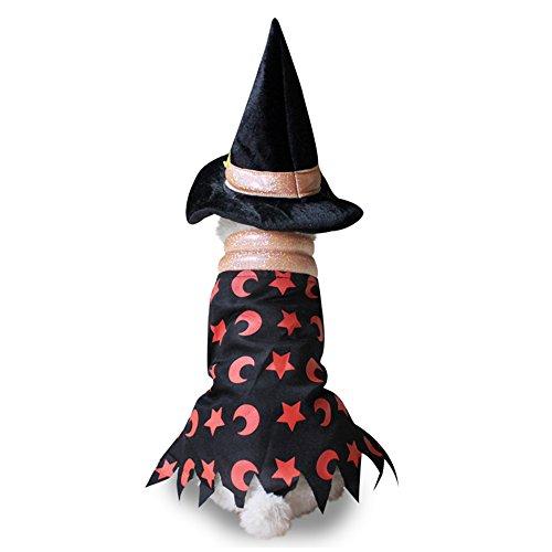 Halloween Hund Katze Vampir Zauberer Kostüm Outfits Funny Hund Kleidung mit Hund Hat Hund Pet Party Kleid Kleiner Hund Jacke Mantel (Katze Vampir Kostüm)