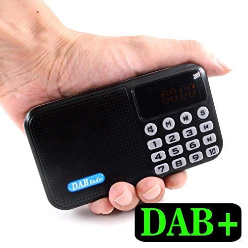 talogca Tragbares DAB-Radio, Mini-Taschenradio, Digitalradio, Bluetooth-Lautsprecher + DAB + FM + MP3-All-in-One-Musik-Player TF-Kartenhalter