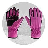 Blisfille Warme Sporthandschuhetelle Winterski Motorradhandschuhe Im Freien Purple Size Small
