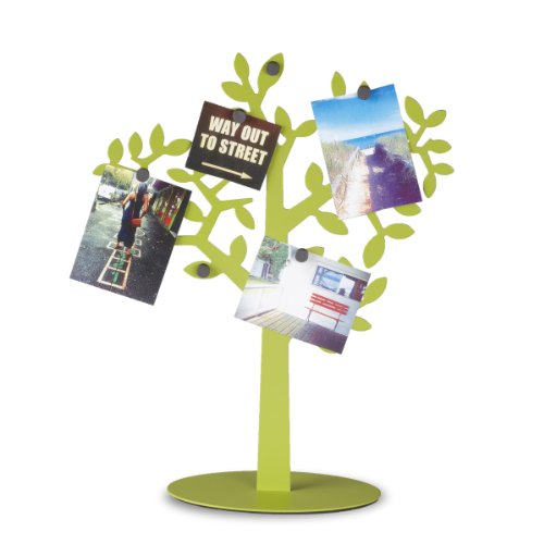 umbra-laurel-desk-frame-avocado
