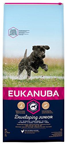 Eukanuba Dog - Developing Junior - Large Breed - 12 kg