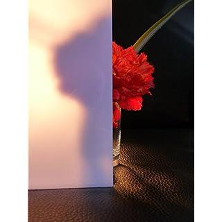 Platte Polycarbonat 30% Ld. 500 x 400 x 3 mm Reststück Milchglas Zuschnitte Sonderpreis alt-intech®