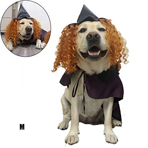 DHQSS Halloween Kostüm Hund, Kreatives Neuheits-Haustier-Kleid-Partei-Kostüm Mit Hexen-Hut Party, Passend Für Cosplay Verschiedene - Hexe Kostüm Für Hunde
