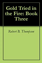 Gold Tried in the Fire: Book Three (English Edition)