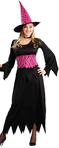Forum Novelties Lacy Pink Witch Women's Costume Dress, Plus Size