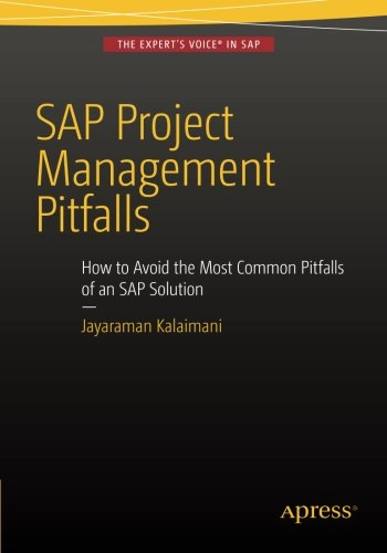 sap-project-management-pitfalls-how-to-avoid-the-most-common-pitfalls-of-an-sap-solution