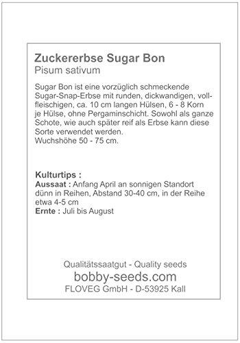 Bobby-Seeds Erbsensamen Sugar Bon Zuckererbse Maxipack
