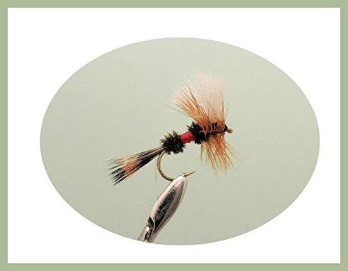 Taglia 10 Daddy Long Legs Trote Mosche 6 varietà confezione da 12 pesca Mosche
