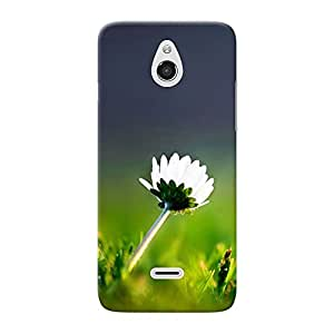 Inkif Printed Designer Case Mobile Back Cover For InfocusM2