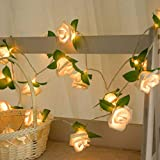 TAOtTAO Rose LED Window Curtain Lights String Lamp Party Decor With 10 LED Beads (Yellow)