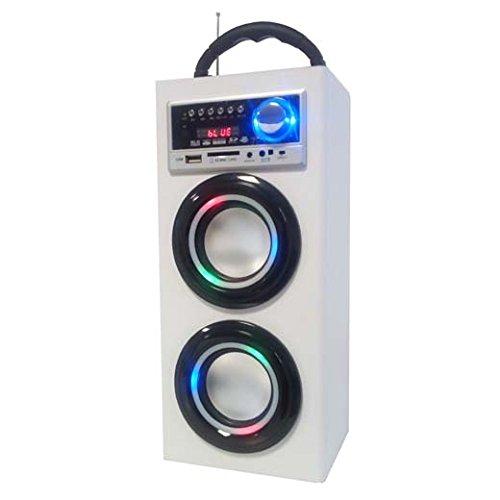 Majestic TS 78 BT USB SD AX - Altoparlanti a torre portatili con Bluetooth,  Ingressi USB/SD/AUX-IN, radio FM, batteria ricaricabile, luci intermittenti, Bianco