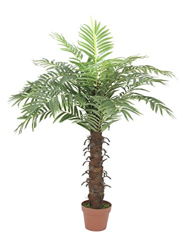 Set aus 2 x Künstliche Cocos-Königspalme mit Palmfaserstamm, 15 Wedel, 120 cm - Zimmerpalme / Künstliche Palme - artplants