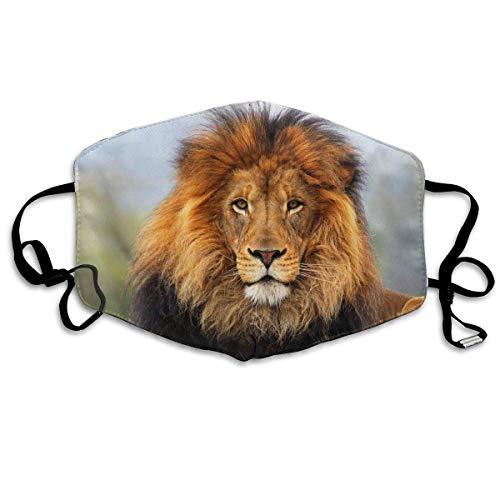 Vbnbvn Unisex Mundmaske,Wiederverwendbar Anti Staub Schutzhülle,Lion Head Face Mask Anti Pollution Dust Maske für Mann ()