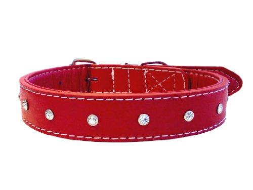 The Paws Hundehalsband, Leder, mit Strasssteinen
