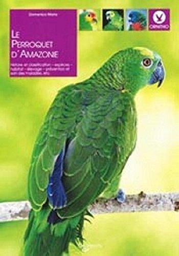 Le perroquet d'Amazonie par Domenico Mario