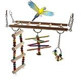 Kleine Naturholzleiter für Vogelkäfige von Emours, Tierschaukel, Aktivitätsspielzeug mit Glöckchenanhänger