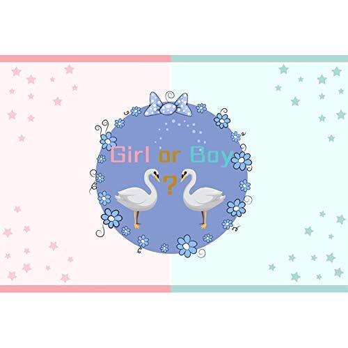 sche Hintergrund Mädchen oder Junge Schwan Blume Sterne Hintergrund Baby Dusche Party Gender Reveal Baby Porträt Fotografie ()