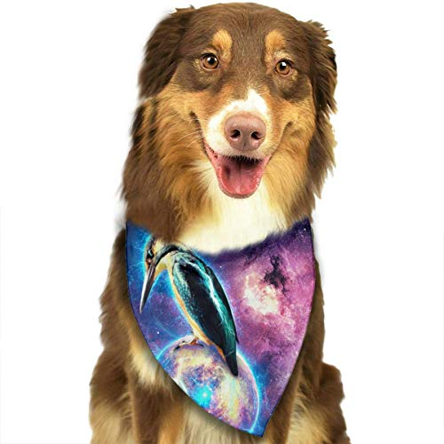 he Universe Fashion Dog Bandana Pet Accessories Easy Wash Scarf ()