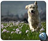 Mausunterlage, Niedliche Labrador-Welpen-Mausunterlage-Auflage - Hundeglöckchen-Goldener Retriever-PC-Computer