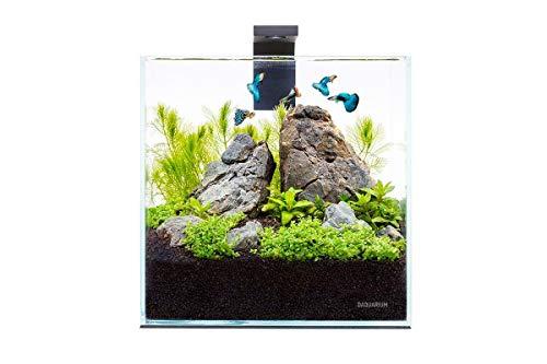 Nicepets ® – Kit Acuario Cristal pequeño Completo