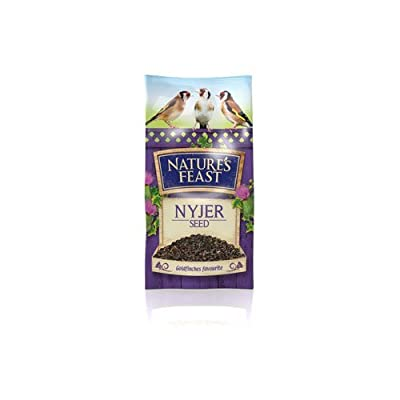 Nature's Feast 1.75Kg Nyjer Seed-P