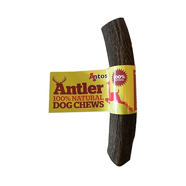 Antos-Limited-Antler-Dog-Chew