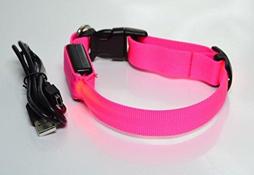 Rutis Tierwelt LED Leuchthalsband Basic 1 per USB aufladb, Größe S, Pink