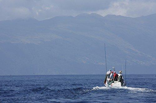 Thunfischfilet mit Oregano 120 g, Portugal, Santa Catarina - 5